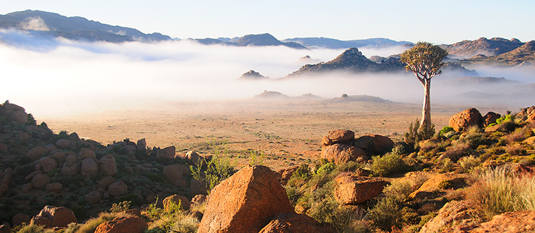 Calvinia Info, Northern Cape, South Africa, www.calvinia-info.co.za, Accommodation, Activities